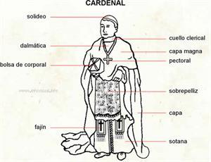 Cardenal (Diccionario visual)