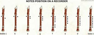 Notes position on a recorder  (Visual Dictionary)
