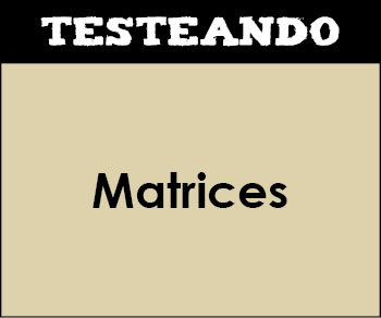 Matrices. 2º Bachillerato - Matemáticas (Testeando)