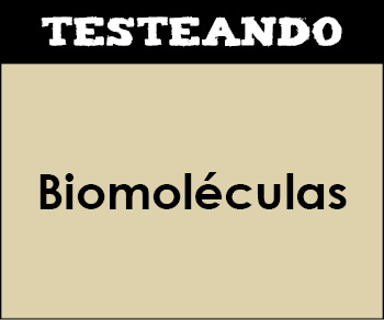 Biomoléculas. 2º Bachillerato - Biología (Testeando)