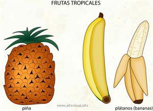 Frutas tropicales (Diccionario visual)