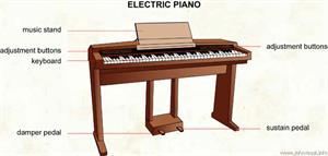 Electric piano  (Visual Dictionary)
