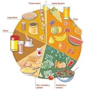 La alimentación, unidad didáctica para Primaria, Secundaria y Bachillerato
