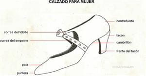 Calzado (Diccionario visual)
