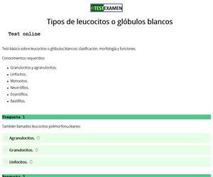 Test: tipos de leucocitos