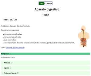 Test: aparato digestivo (2)