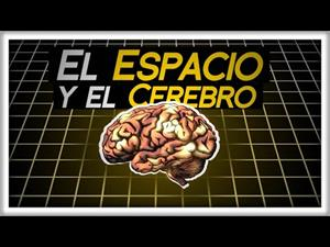 Cómo el Cerebro Procesa el Espacio (y qué pinta la Física en esto)