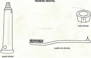 Higiene dental (Diccionario visual)