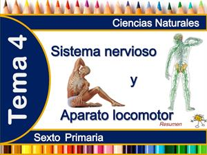 El sistema nervioso y aparato locomotor por José Alberto Verdugo