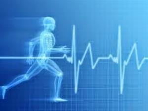 La salud y su relación con la sociedad