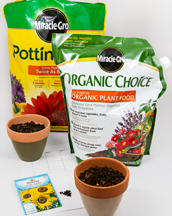 Do Plants Grow Best In Chemical Fertilizer, Organic Fertilizer, Or No Fertilizer?