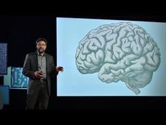 Como decide o teu cerebro o que é fermoso