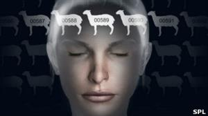 BedTime Math: sumas y divisiones, un método novedoso para dormir a los niños