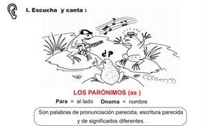 Parónimos y homónimos. IRFA Perú
