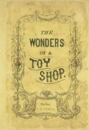 The wonders of a toy shop (International Children's Digital Library)