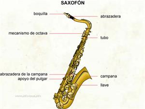 Saxofón (Diccionario visual)