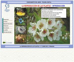 La reproducción de las plantas – Conocimiento del medio – 3º Ciclo de E. Primaria – Unidad didáctica.