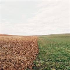 1815 - la primera reforma agraria
