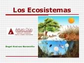 Los ecosistemas por Ángel Encinas Barcenillas