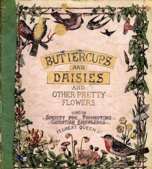 Buttercups and daisies and other pretty flowers (International Children's Digital Library)