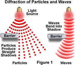 Light: Particle or a Wave? (micro.magnet.fsu.edu)