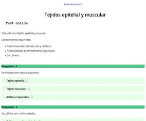 Test: tejidos epitelial y muscular
