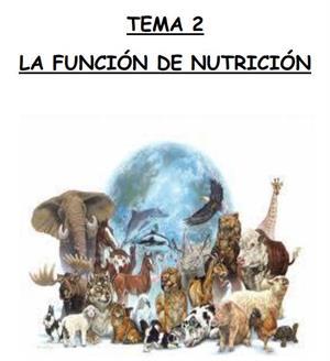 La función de nutrición (unidad didáctica)