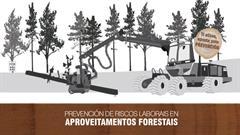 Prevención de riscos laborais en aproveitamentos forestais