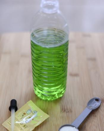 Growing Algae
