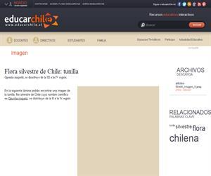 Flora silvestre de Chile: tunilla (Educarchile)