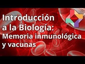 Memoria inmunológica y vacunas