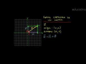 Forma cartesiana de un vector (parte 1)