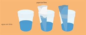 Como afecta la contaminación del agua a las plantas. Experimento de Medio Ambiente