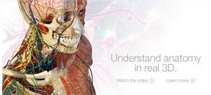 Anatomía humana en 3D