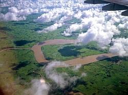 Los bosques y el cambio climático (FAO)