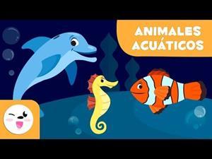 Los animales acuáticos (vocabulario para niños)