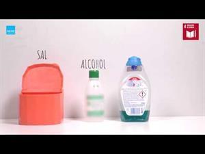 Experimentos Caseros de Biología: Observación del ADN