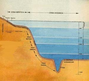 Relieve del Mar de Chile (profesorenlinea.cl)