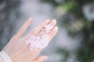La piel, órgano de los sentidos. ¿Qué funciones tiene la piel? Experimento sensorial. (Instrucciones para el profesorado)