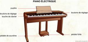 Piano électrique (Dictionnaire Visuel)