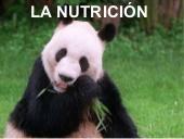 La función de nutrición.