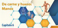 Cómo influyen los seres bióticos y abióticos en la salud (PerúEduca)