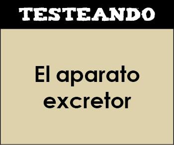 El aparato excretor. 3º ESO - Biología (Testeando)