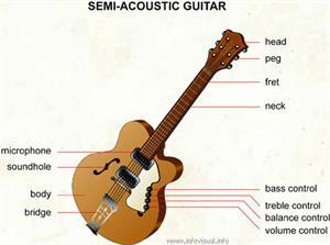 Semi-acoustic guitar  (Visual Dictionary)