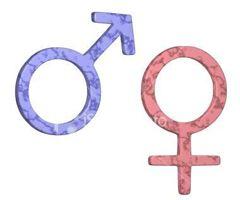 Sistema reproductor de la mujer y del hombre