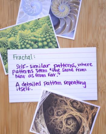 A Fractal in a Fractal
