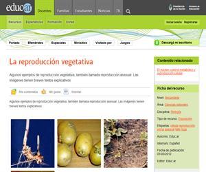 La reproducción vegetativa