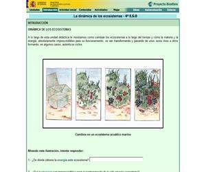 La dinámica de los ecosistemas (Proyecto Biosfera)