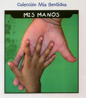My hands (International Children's Digital Library)