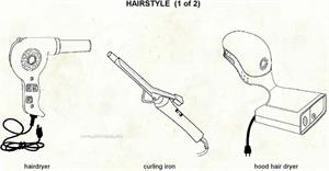 Hairstyle  (Visual Dictionary)